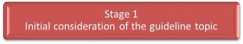 Stage 1 - Initial consideration of the guideline topic