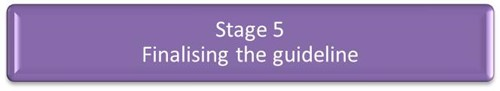 Stage 5 - Finalising the guideline